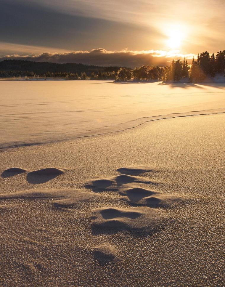 winter north